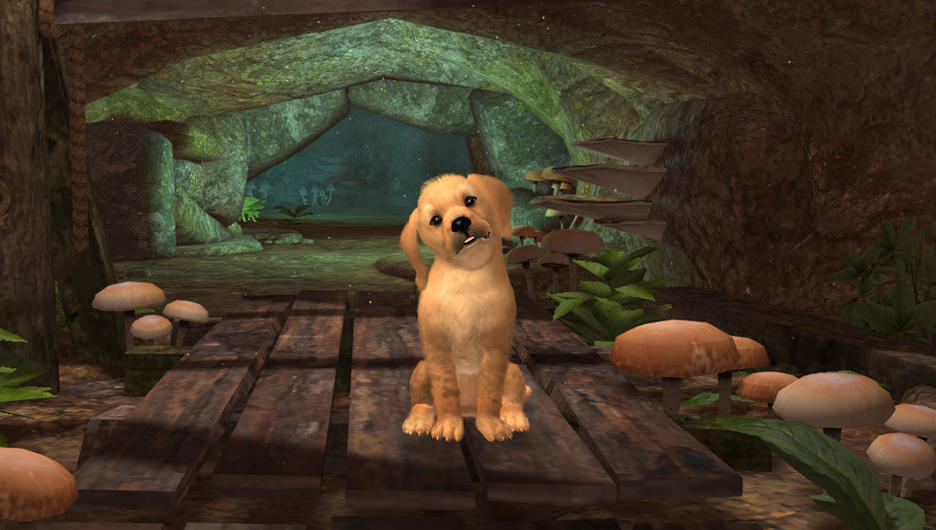 the dog island gamestop games